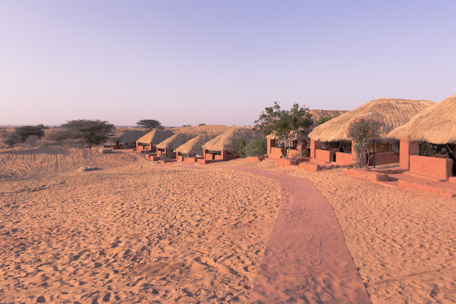 Desert Tent Accommodation of Reggie's Camel Camel in Jodhpur Desert Safari Rajasthan India