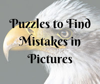 Finding Mistake in Picture Puzzles