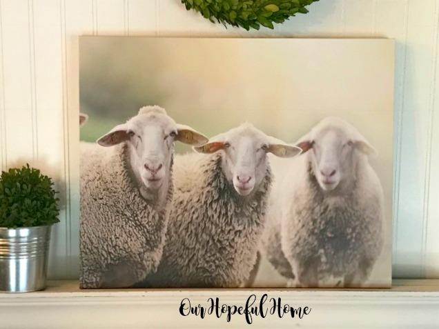 Our Hopeful Home: Farmhouse Sheep Wall Art and Canvas ...