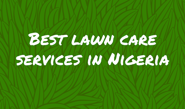 Best lawn care services in Nigeria