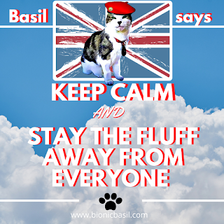 Basil Says Keep Calm and Stay The Fluff Away From Everyone ©BionicBasil®
