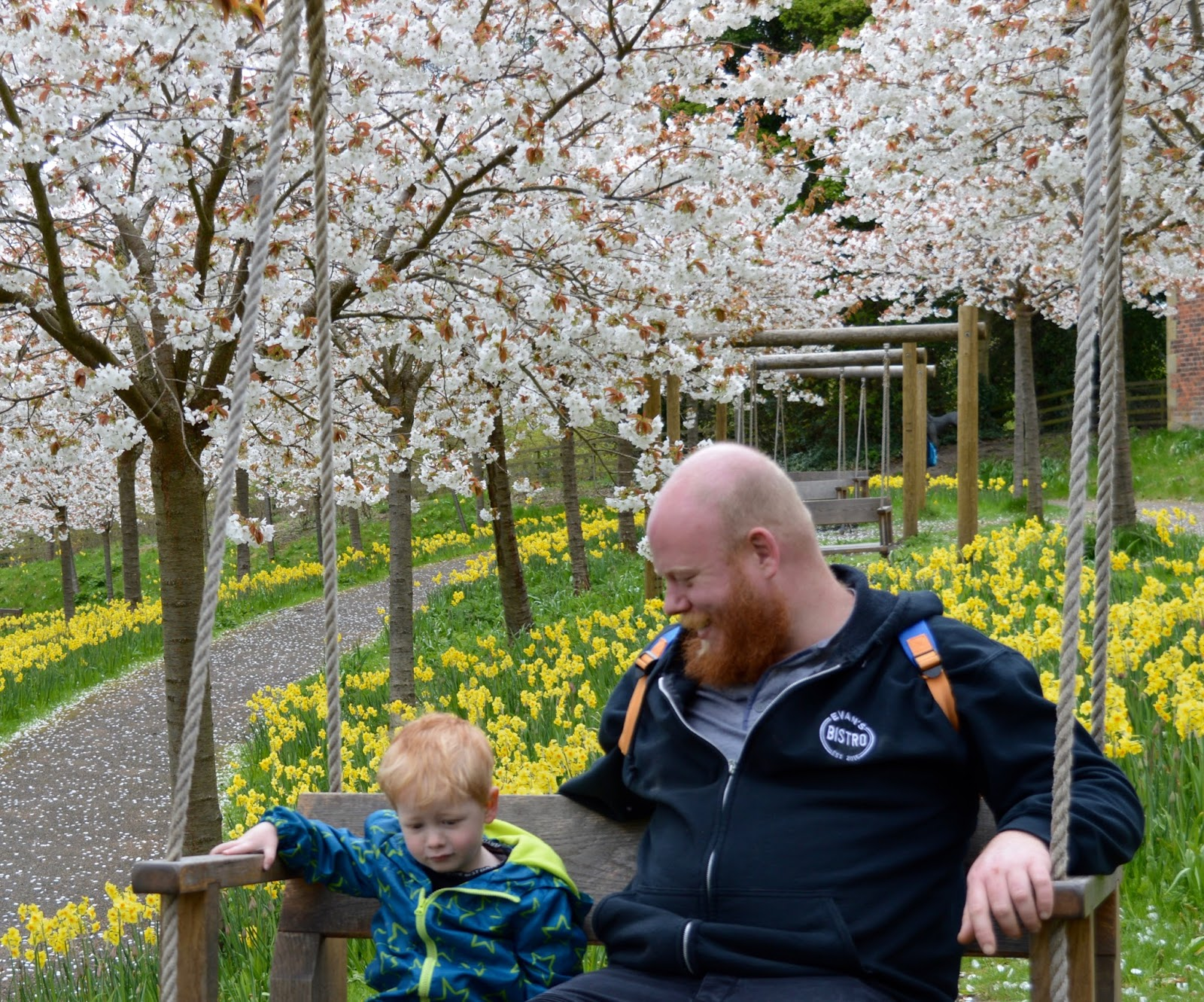 The Cherry Blossom Orchard at The Alnwick Garden  - kids swing