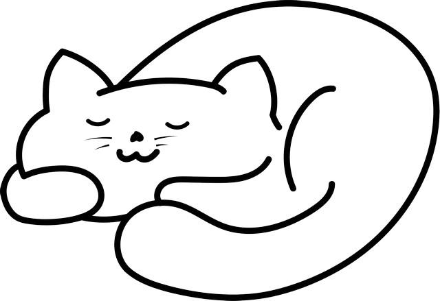 Gambar Kucing Mudah godean.web.id