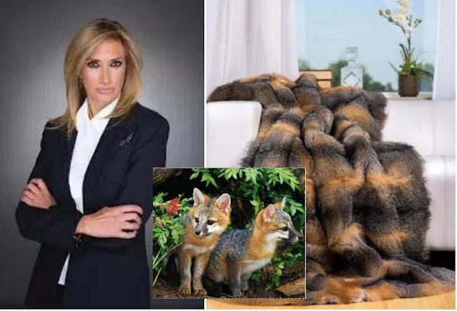 Adela Micha importa cobertores de piel de Zorro Gris, especie en peligro de extinción