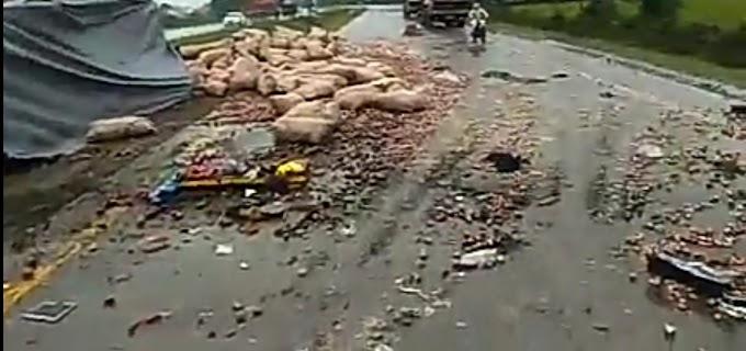 सिद्धार्थनगर से मुंबई जा रही मजदूरों से भरी ट्रक गाय से टकराकर पलटी, 3 की मौत 26 घायल