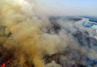 Salles admite que incêndio no Pantanal é de 'proporção gigantesca'