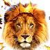 Tiger Dance ( Vibrate Dhol Mix ) UT Mix Dj Bitty Production 2k18