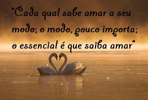 """A Cada Dia Que Nasce O Meu Amor Por Você Fica Mais Forte: Belas Frases De Amor: """"Cada Qual Sabe Amar A Seu Modo; O"""