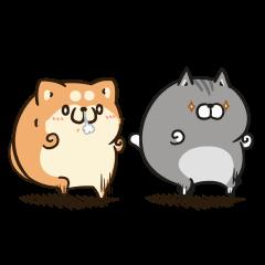 Moving Plump dog & Plump cat 2