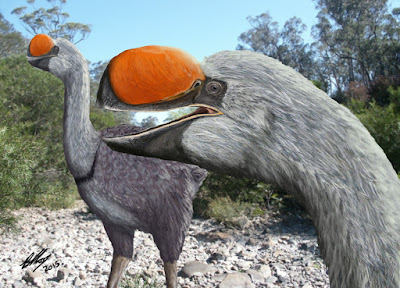 Ancestor of biggest bird ever discovered