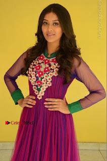 Actress Pooja Jhaveri Latest Stills in Purple Salwar Kameezt at Dwaraka Success Meet  0084.JPG