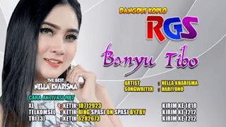 Lirik Lagu Banyu Tibo (Dan Artinya) - Nella Kharisma