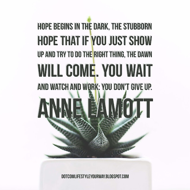 Hope begins in the dark...you wait and watch and work. You don't give up. Anne Lamott Quote