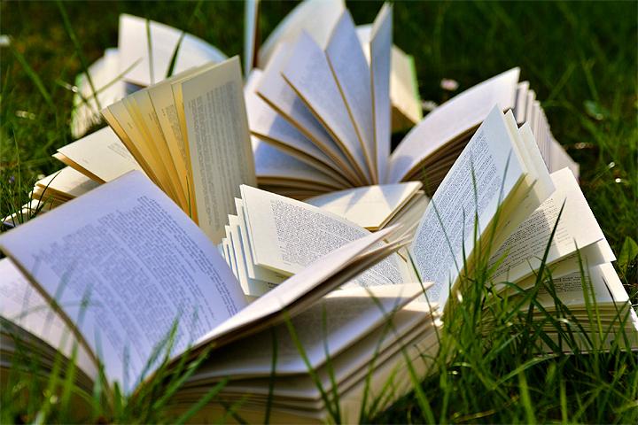 किताबें शब्दों का खेत होती हैं..