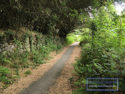 jalan menuju istana raja pulau sibandang atau pulau pardopur