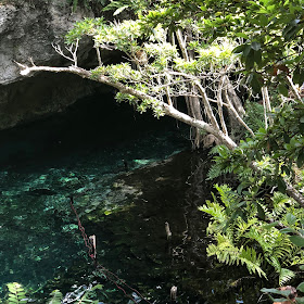 Tulum, travel guide, what to do in Tulum, Gran Cenote, cenotes