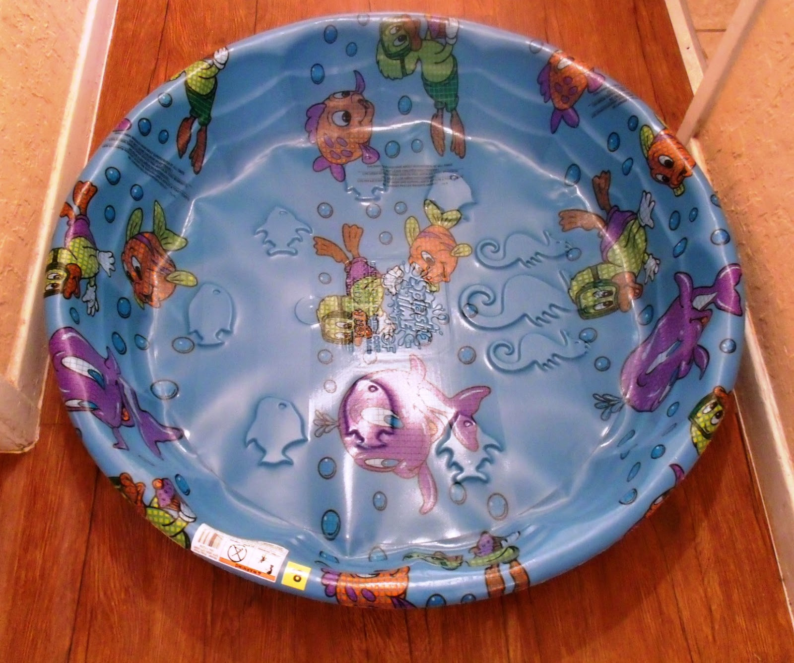 Living A Doll's Life : Our NEW Doll Pool
