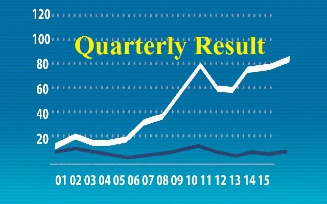 What Is Quarterly Result In Hindi