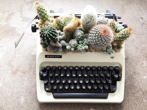 maceta-maquina-escribir