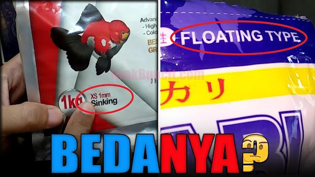 Pelet Sinking atau Floating? Apa Bedanya? Mana yang Lebih Bagus untuk Ikan Mas Koki?