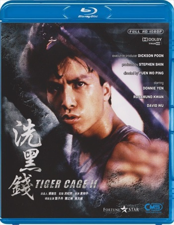 Download Tiger Cage 2 1990 Dual Audio Hindi BluRay 300mb