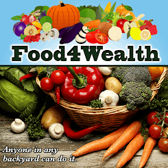 Foods For Wealth
