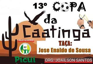 Começa neste domingo (4), a 13ª edição da Copa da Caatinga no município de Picuí