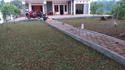 Tukang Rumput Bintaro | SuryaTaman