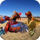 Downloa Farm Deadly Rooster Fighting v1 mod apk [Sabung ayam] Unlimited Money