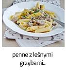https://www.mniam-mniam.com.pl/2013/09/penne-z-lesnymi-grzybami.html