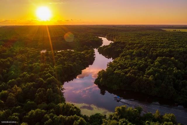 Палиастоми - наша Амазонка