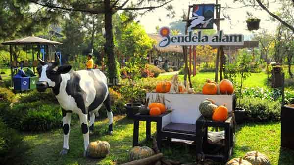 Tempat Wisata yang Cocok Untuk Anak-anak di Bandung