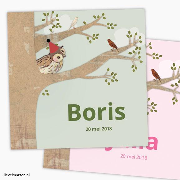 https://lievekaarten.nl/geboortekaartjes/geboortekaartje-boris-13x13-cm