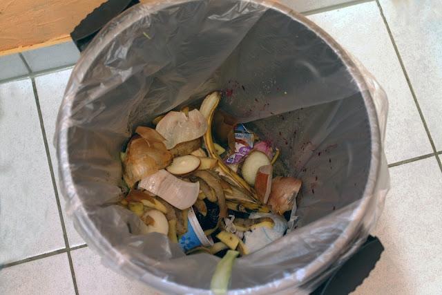 cestino-bidone-rifiuti domestici