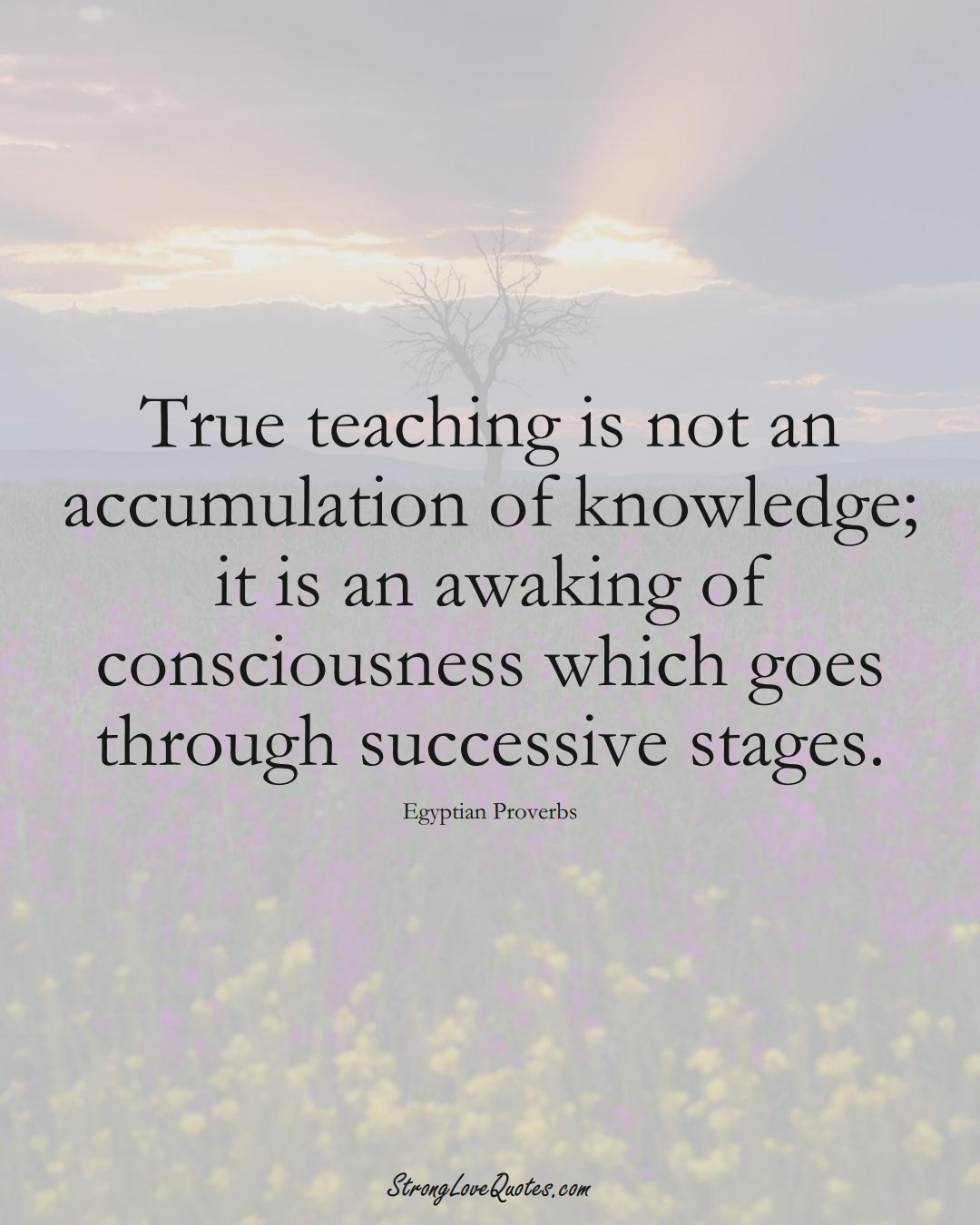 True teaching is not an accumulation of knowledge; it is an awaking of consciousness which goes through successive stages. (Egyptian Sayings);  #MiddleEasternSayings