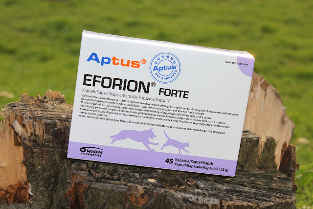 Eforion Forte - recenzja