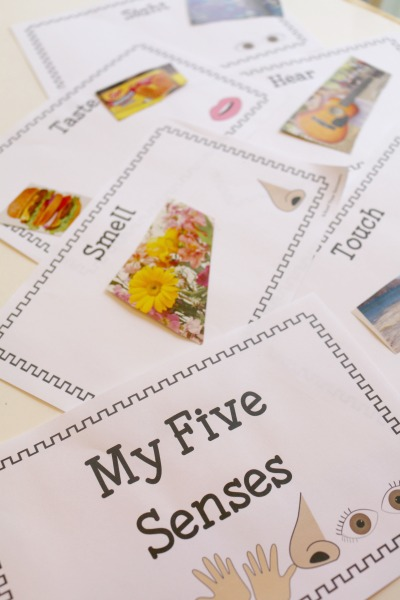 A fun way to explore the five senses with your preschooler is to make a fun little mini book with pictures for each sense!