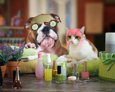 animal manicurist