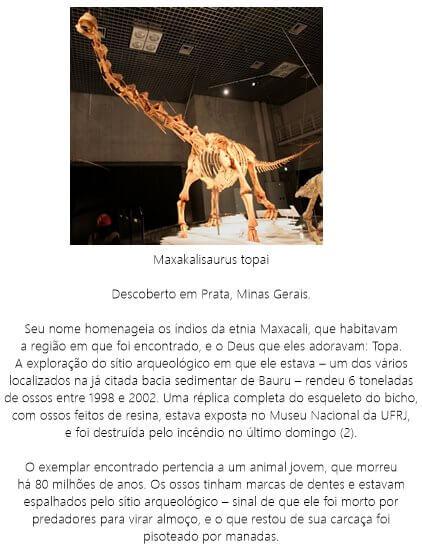 Dinossauro-Maxakalisaurus-Topai