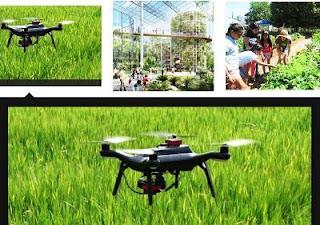 SKYFARM (Hands Free Hectare) Sistem Pertanian Inggris Menanam Barley (Sejenis Gandum) Hanya Menggunakan Tenaga Drone dan Traktor
