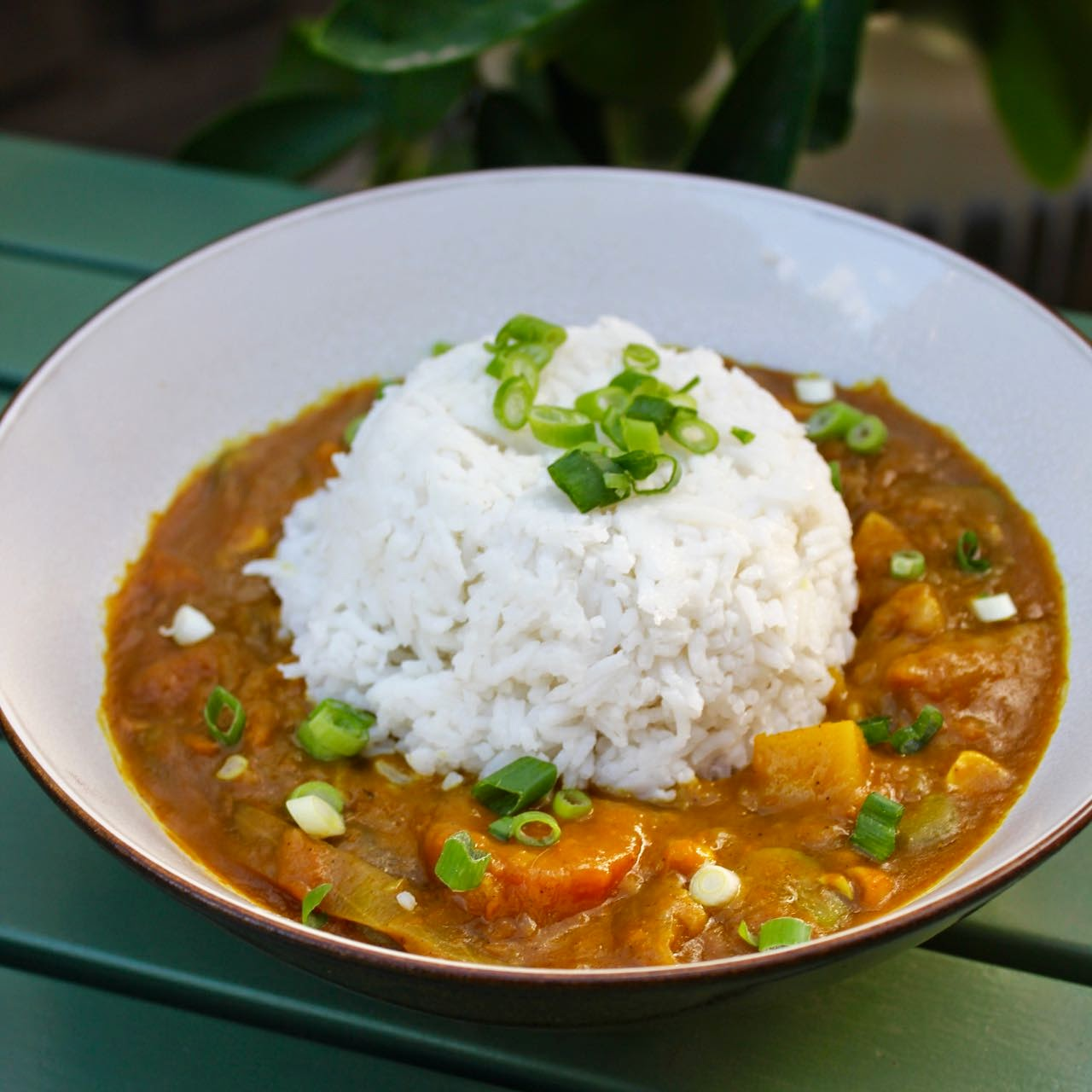 Green Gourmet Giraffe Vegetarian Japanese Curry