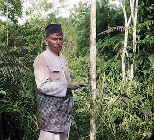 mengetok pohon benzoin atau haminzon