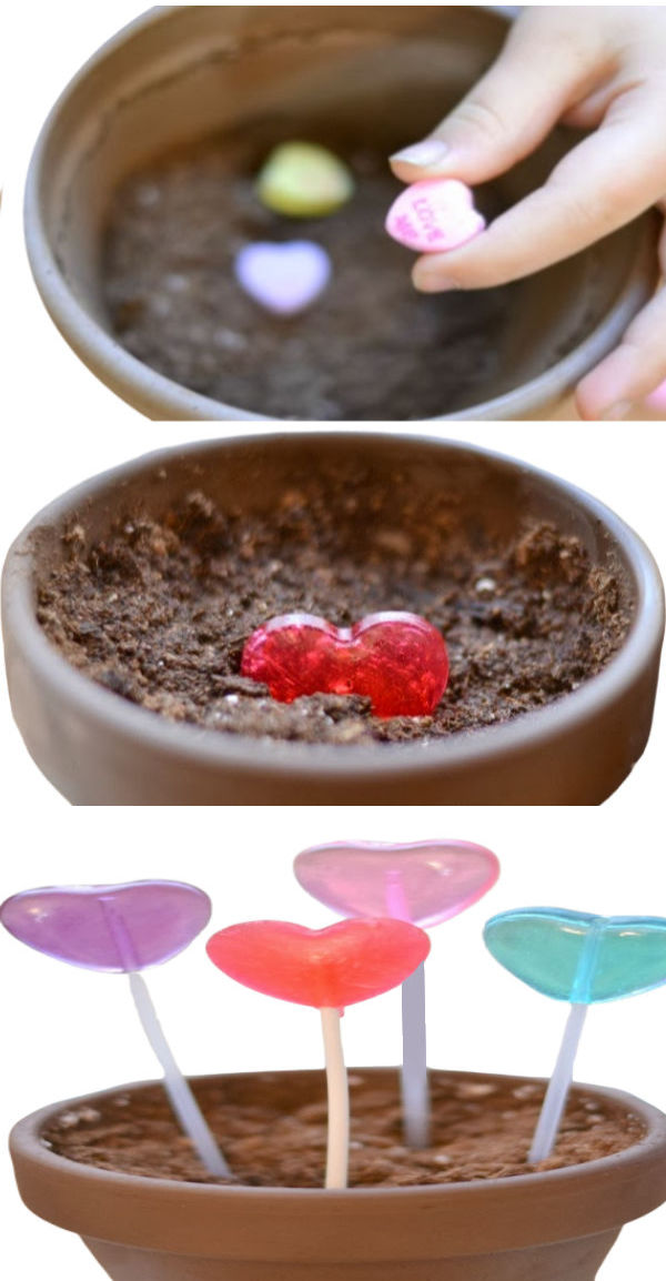 "Wow kids of all ages and grow lollipops!  All you need are ""magic seeds""! #growalollipop #growlollipops #valentinesday #valentinecrafts #growingajeweledrose #activitiesforkids"