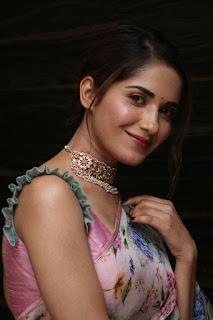 Telugu Actress Ruhani Sharma saree stills at HIT Movie Pre-Release Event Navel Queens