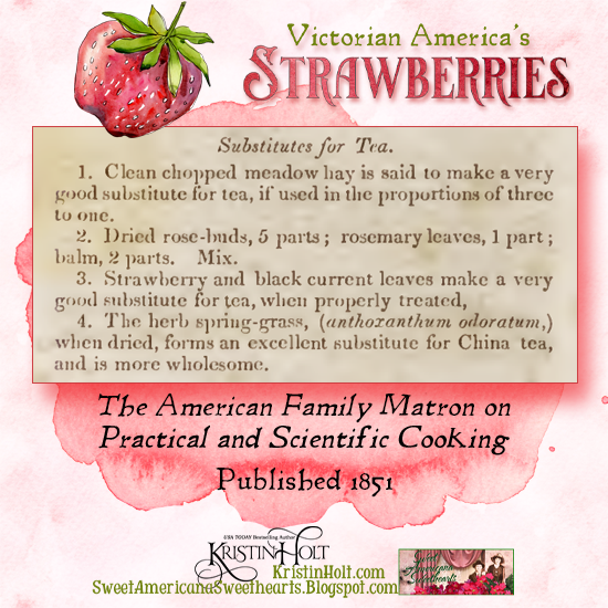 "Kristin Holt | Victorian America's Strawberries. Substitutes for Tea: Raspberry leaves ""make a very good substitute for tea..."" The American Family Matron on Practical and Scientific Cooking, published 1851."