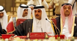 مسئول قطرى يصرح ان استثمارات قطر الزراعية تكفى عدة دول