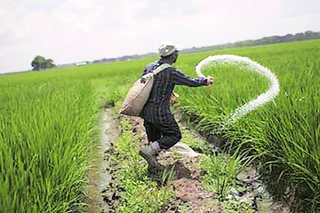 4 day long National Agrochemicals Congress concludes with recommendations for safe and judicious pesticide use in the country