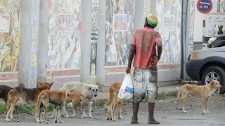 Poor people with poor dogs in Sao Tome