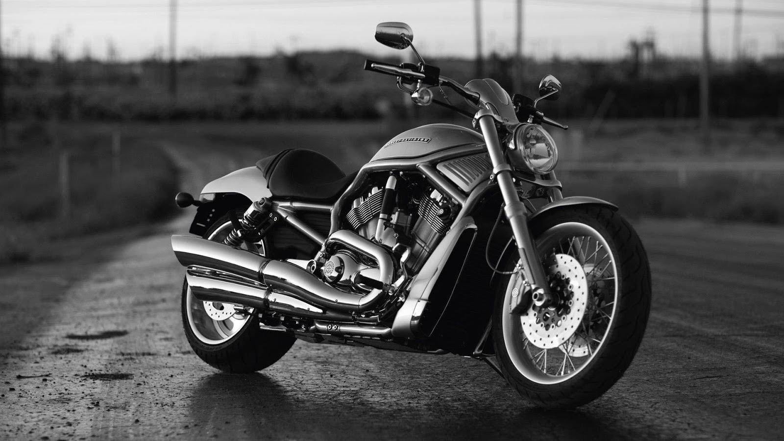 Daftar Harga Motor Harley Davidson Terbaru