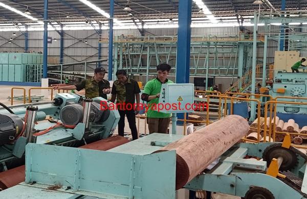 PT Nagabhuana Pulang Pisau Export Plywood Ke Jepang